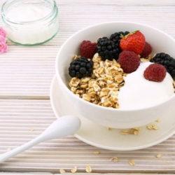 乳酸菌 ダイエット 効果